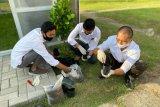 Semangatkan green energy, PLN UPK Lombok bangun