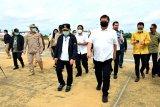 Menko Perekonomian dan Menteri ATR/BPN tinjau lahan di Kalteng