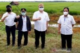 Pemerintah serahkan data inventarisasi tanah dukung  'food estate'  Kalteng