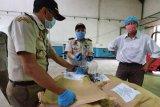 Karantina Pertanian Lampung catat peningkatan ekspor asam kandis
