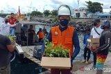 Wali Kota Manado Bawa Bibit Jagung-Cabe ke Bunaken
