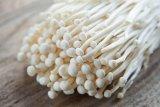 Kementan paparkan penyebab masuknya produk jamur enoki mengandung Listeria