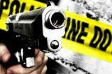 Residivis penyerang mapolres Ogan Komering Ilir tewas ditembak