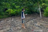 Petani Lombok Utara tuntut kerugian dari PLTMH Segara