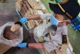 Lengkuas Lampung siap penuhi permintaan ekspor ke Inggris