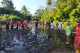 Lombok Utara mencegah abrasi dengan 5.420 bibit mangrove