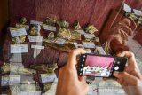 Pengunjung mengabadikan gambaer dari fragmen fosil di Museum Fosil Tambaksari, Kabupaten Ciamis, Jawa Barat, Rabu (1/7/2020). Museum tersebut menyimpan sejumlah peninggalan zaman purbakala, yakni berupa fosil hewan, manusia purba dan tumbuhan yang umurnya diperkirakan sudah ribuan tahun yang lalu. ANTARA JABAR/Adeng Bustomi/agr