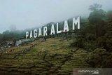Di Kota Pagaralam ditemukan kasus positif COVID-19 lokal pertama