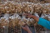 Stok menumpuk, ASN Temanggung beli bawang putih petani