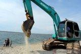 Pemprov DKI disarankan tanam mangrove di lokasi reklamasi Ancol