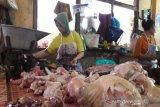 Harga daging ayam di Temanggung capai Rp40.000 per Kg