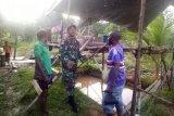 Satgas Pamtas Yonif 509/Kostrad ajarkan warga kampung Umuaf budidaya ikan lele