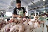 Kenaikan harga daging ayam dorong inflasi Kota Madiun pada Juni 2020
