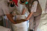 Getah Damar Lampung tembus enam negara