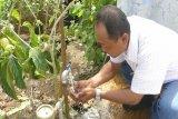 PDAM Ogan Komering Ulu imbau warga  hemat penggunaan air bersih