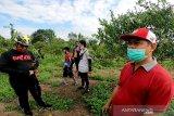Peluang usaha tanaman buah di Kotim sangat menjanjikan
