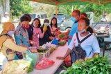 DPTH Jayapura membantu pasarkan hasil kebun petani lokal
