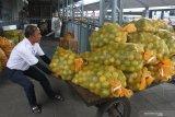 Pekerja menarik troli barang bermuatan komoditas jeruk sebelum dikirim ke Jakarta di Gudang Rail Express, Malang, Jawa Timur, Senin (6/7/2020). Pengelola jasa pengiriman barang melalui kereta api setempat mengaku sejak dua minggu terakhir pengiriman barang meningkat dari 15 ton menjadi 25 ton per hari dan didominasi bahan makanan serta komoditas pertanian. Antara Jatim/Ari Bowo Sucipto/zk.