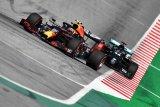 Bos Red Bull sarankan Hamilton minta maaf ke Albon