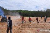 Polres Tebo menangkap dua warga pelaku pembakar lahan