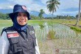 ACT Sulteng kerja sama Pemkab Sigi bangun ketahanan pangan