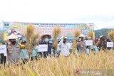 Gubernur: apresiasi Polri/TNI ikutserta jaga ketahanan pangan Sumbar