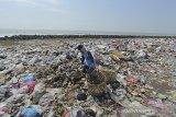 Pemulung mengais sampah di tempat pembuangan sampah di pantai desa Lombang, Juntinyuat, Indramayu, Jawa Barat, Rabu (8/7/2020). Karena belum memiliki fasilitas memadai, pemdes setempat terpaksa membuat tempat pembuangan sampah sementara di sekitar pantai tersebut. ANTARA JABAR/Dedhez Anggara/agr