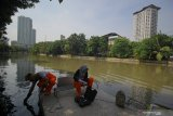 Aktivis lingkungan hidup dari Ecological Observation and Wetlands Conservation (Ecoton) mengambil sampel air untuk penelitian polutan berbahaya dan kandungan mikroplastik di sungai kawasan Keputran, Surabaya, Jawa Timur, Kamis (9/7/2020). Tim peneliti Ecoton menemukan sejumlah polutan berbahaya dan mengidentifikasi enam mikroplastik dari bentukan fiber, fragment, filament, granular, foam dan pelet yang dapat merusak ekosistem serta mencemari sungai di Surabaya. Antara Jatim/Moch Asim/zk.