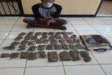 Dua pengedar ganja di Jayapura dan Keerom ditangkap, satu warga PNG