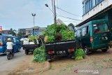 Sejumlah pedagang aneka sayuran segar saat membongkar barang daganganya di kawasan Pasar Mawar, Kota Bogor, Jawa Barat, Kamis (09/07/20).  Pemandangan seperti itu biasa terjadi setiap hari sejak sore hingga malam, bahkan dini hari. Mengonsumsi buah dan sayuran bisa meningkatkan Imunitas tubuh kita. (Foto: megapolitan.antaranews.com/M. Tohamaksun).