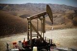 Harga minyak dunia terangkat saat penurunan stok AS picu harapan permintaan
