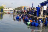 Kapolda Jateng dan Pangdam panen 5,4 ton ikan dan udang