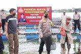 Polres Karimun panen 6.000 ekor lele untuk masyarakat