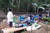 BRG ajari petani gambut buka lahan tanpa bakar
