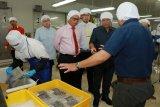 Kaltara Sebagai Produsen Utama Udang di Kalimantan