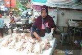 Harga ayam di Pekalongan tembus Rp40 ribu/kg