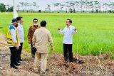 Presiden Jokowi: potensi desa-desa di Indonesia harus dikembangkan