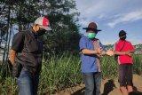 PTPN XI pastikan kecukupan bahan baku tebu untuk musim giling 2020