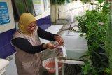 Warga Pulau Pisang mulai terapkan sanitasi sehat