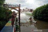 Ekowisata Mangrove Lantebung mulai dibuka