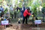 Menteri Siti Nurbaya  dorong perhutanan sosial untuk kesejahteraan masyarakat