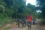Akibat hujan, anggota Satgas TMMD kembali lakukan pentimbunan jalan