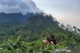 Seluruh objek wisata di Kabupaten Kulon Progo siap dibuka untuk umum