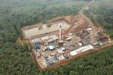 Kabupaten Musi Banyuasin siapkan lokasi bangun kawasan industri hijau