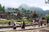 Gunung Kidul kembangkan agrowisata Karang Raya Ecopark