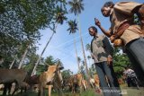 Begini protokol kesehatan penyembelihan hewan kurban di Padang, termasuk daging diantar ke rumah