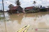 PLN padamkan 56 gardu di Sengkang Kabupaten Wajo akibat banjir