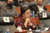 Menkeu: Presiden minta RAPBN 2021 fokus ke empat program besar