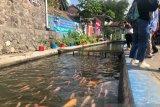 Penataan kawasan kumuh Winongo Yogyakarta dilanjutkan
