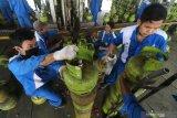 Pekerja menata tabung elpiji 3 kilogram di salah satu stasiun pengisian bahan bakar elpiji (SPBE) di Kota Kediri, Jawa Timur, Rabu (15/7/2020). Pertamina Marketing Operasional (MOR) V melakukan perluasan pangkalan elpiji 3 kilogram melalui program